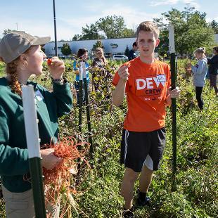 Students do farm work at Eighth Day Farm.