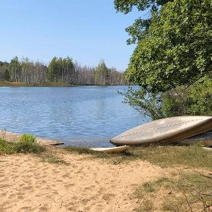 An image of a beach by a lake, with trees surrounding it and canoes lying on the sand