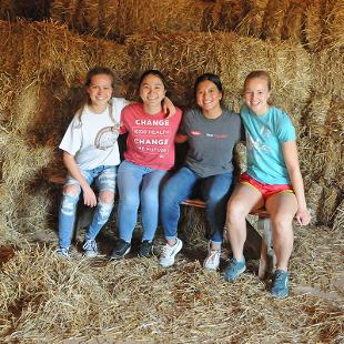 Four females still on hay bales at the Critter Barn's new location.