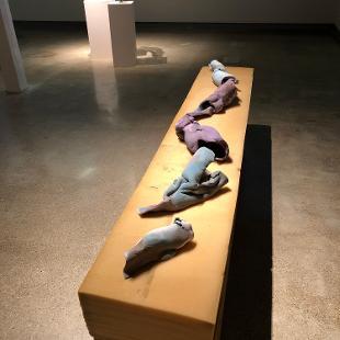 Shauna Merriman exhibition shot