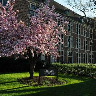 Lubbers Hall on a spring day