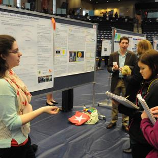 Students view two research posters during Celebration