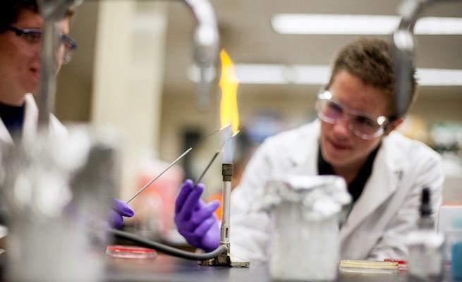 Students perform chemical tests in the lab