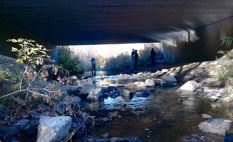 Students collect data from an underpass river