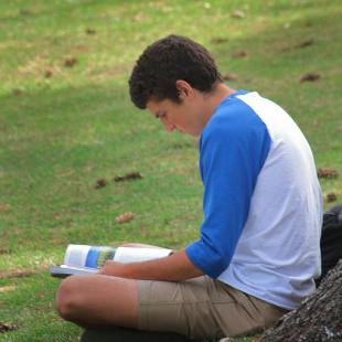 A male student studying in the lawn