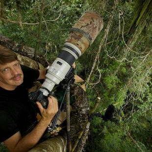 Tim Laman '83 is a field biologist and award-winning wildlife photojournalist with a passion for exploring nature.