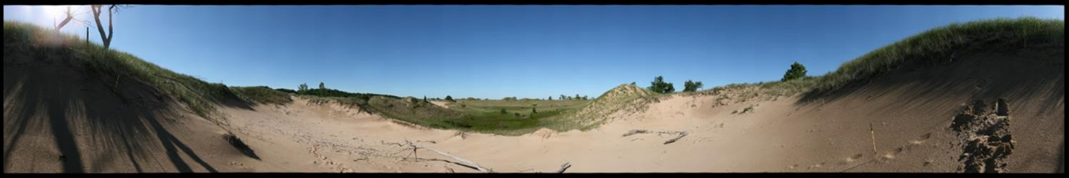 360 degree panoramic view of a dune blowout and wetland