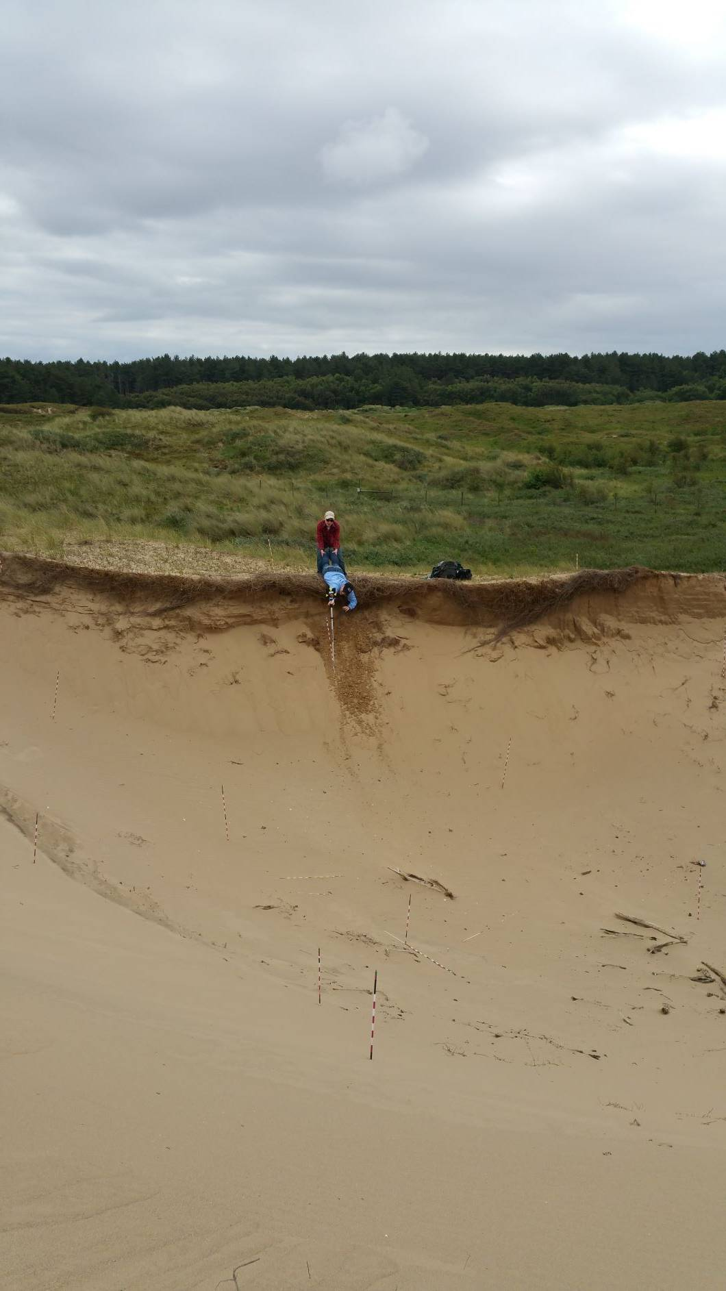 view of a deep sand depression with a prone student leaning out over the rim to hold a surveying rod while another student holds her legs